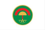 army_logo
